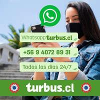 WhatsApp 247
