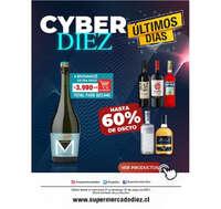 Cyber Diez