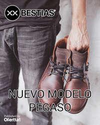 Nuevo modelo Pegaso