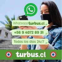 Turbus en Whatsapp