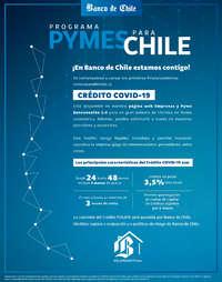 Programa Pymes Para Chile