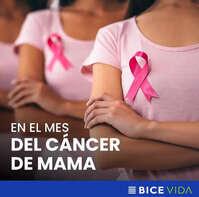 Bice Vida contra el cáncer