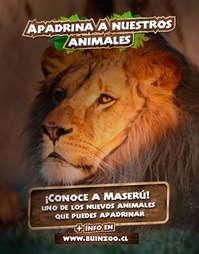 Apadrina A Nuestros Animales