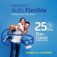 Auto flexible