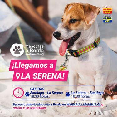 Mascota a Bordo está en La Serena- Page 1